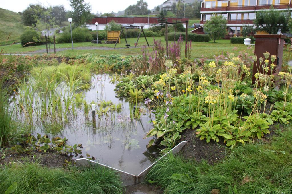 Beplantet regnbed i boligområde